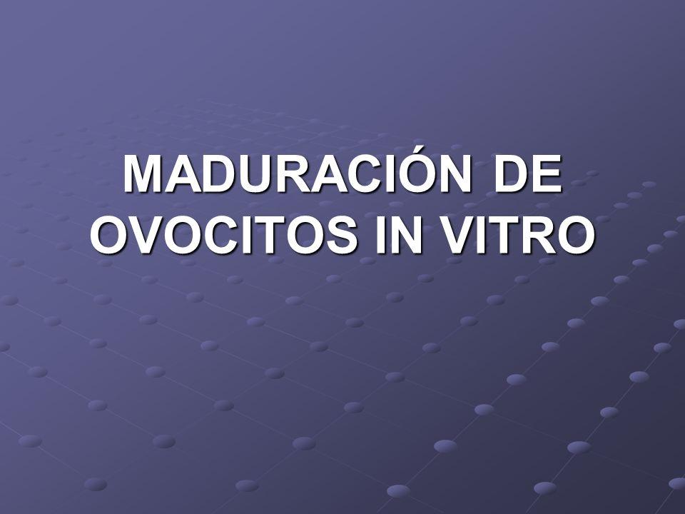 MADURACIÓN DE OVOCITOS IN VITRO