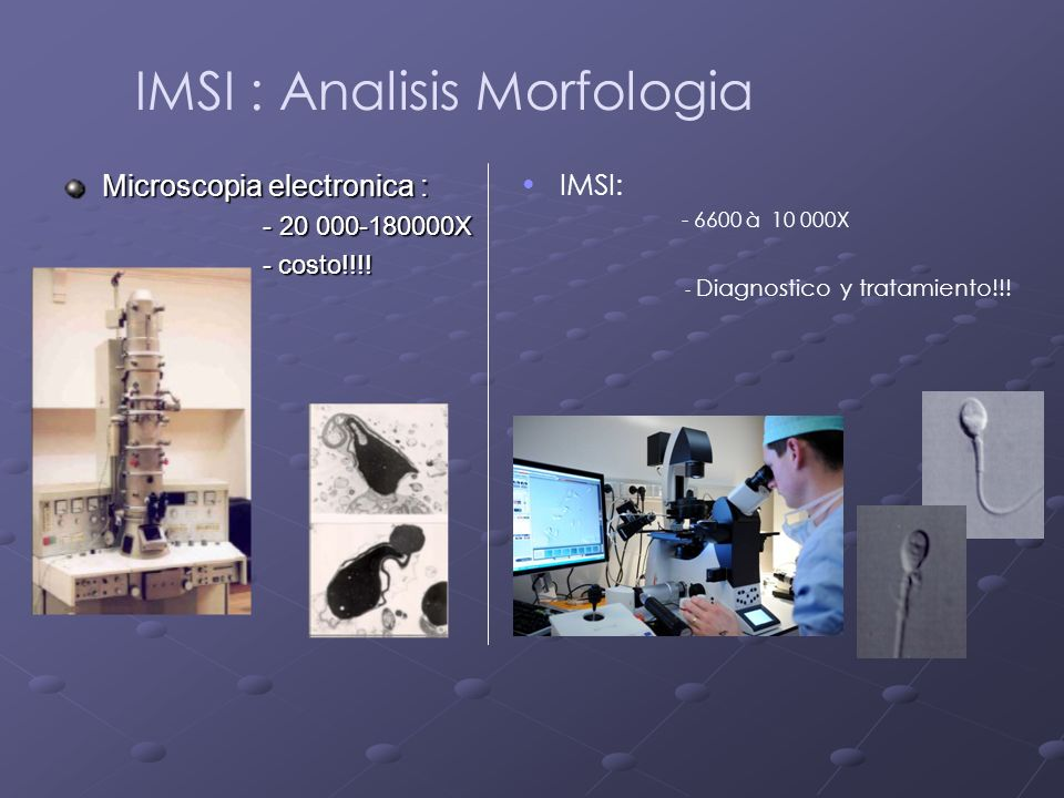 IMSI : Analisis Morfologia