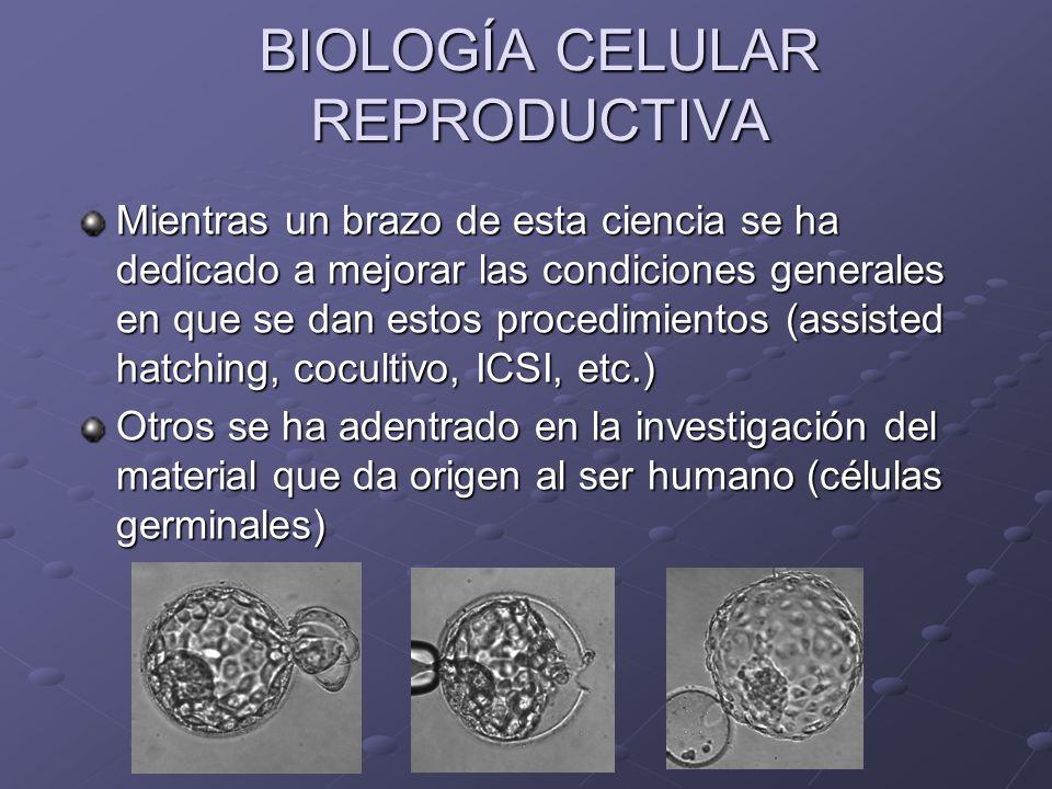 BIOLOGÍA CELULAR REPRODUCTIVA