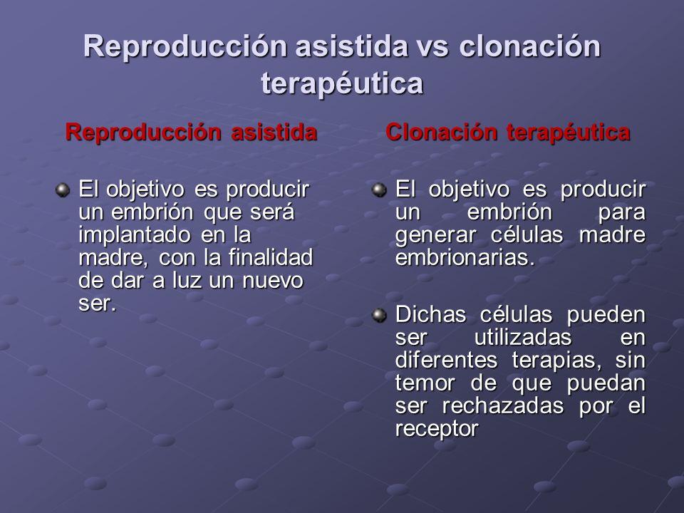Reproducción asistida vs clonación terapéutica