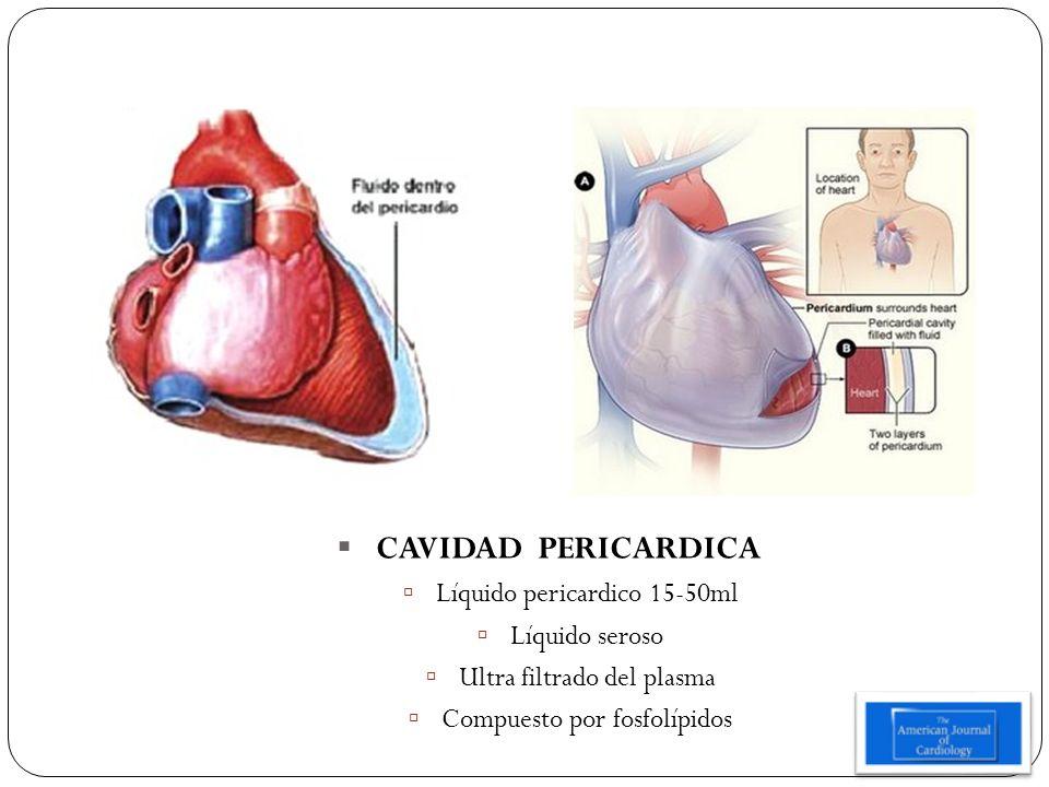 CAVIDAD PERICARDICA Líquido pericardico 15-50ml Líquido seroso