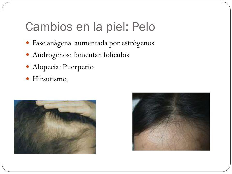 Cambios en la piel: Pelo