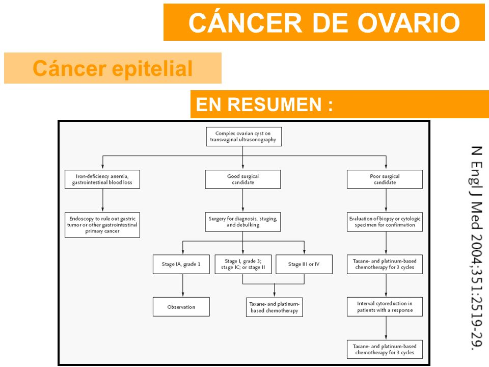 CÁNCER DE OVARIO Cáncer epitelial EN RESUMEN :