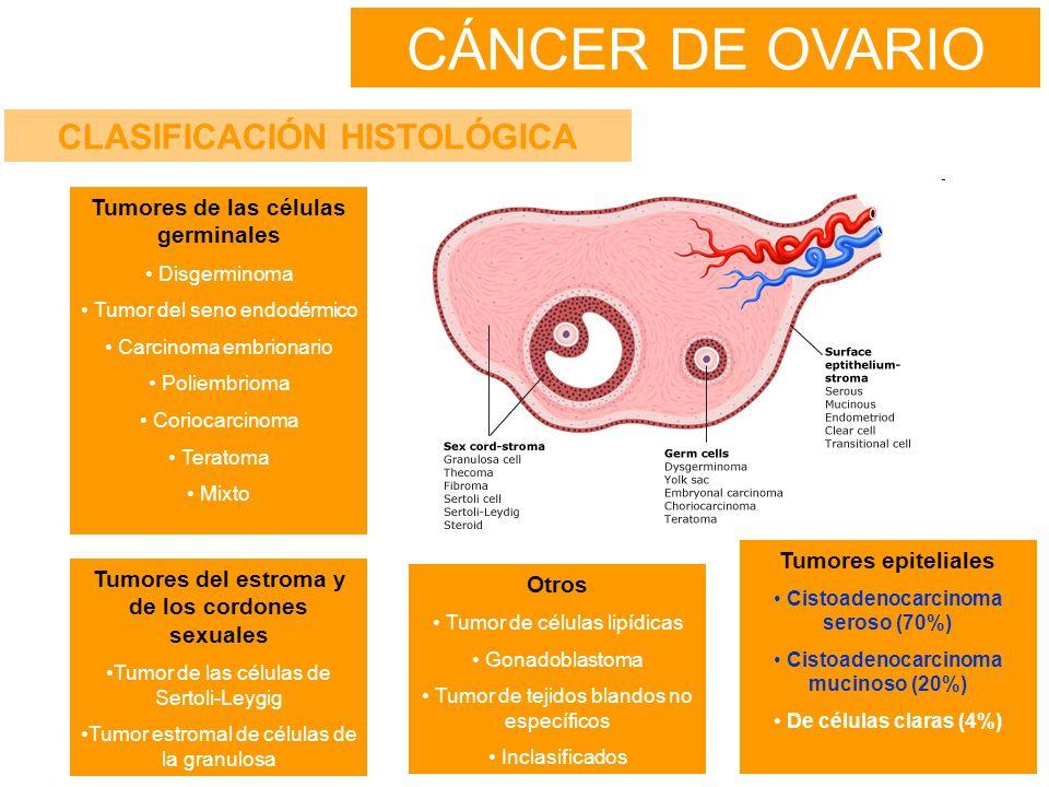 CÁNCER DE OVARIO CLASIFICACIÓN HISTOLÓGICA