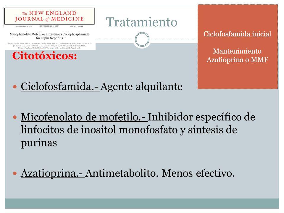 Tratamiento Citotóxicos: Ciclofosfamida.- Agente alquilante