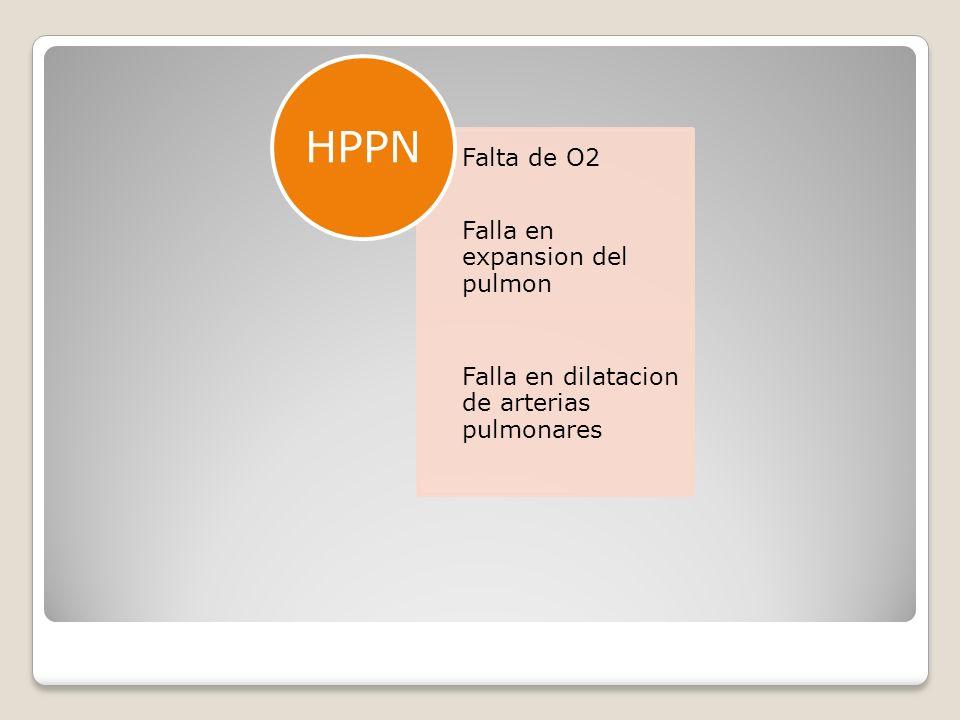 HPPN HPPN: hipertension pulmonar persistente del rn
