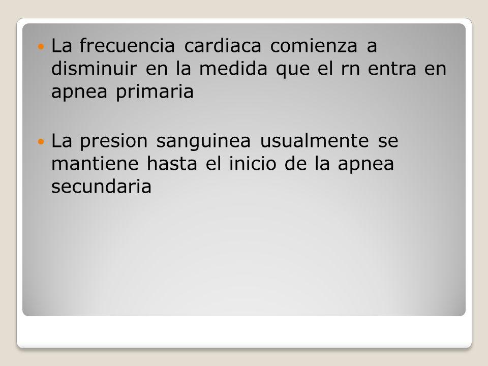 La frecuencia cardiaca comienza a disminuir en la medida que el rn entra en apnea primaria