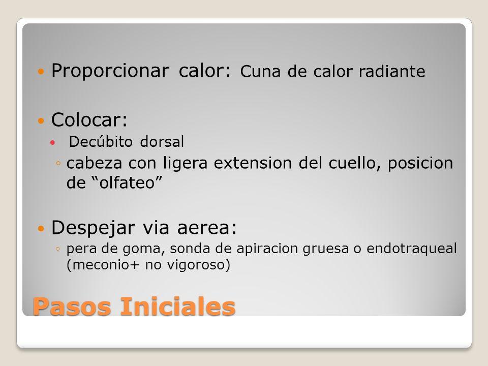 Pasos Iniciales Proporcionar calor: Cuna de calor radiante Colocar: