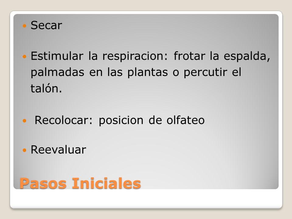 Secar Estimular la respiracion: frotar la espalda, palmadas en las plantas o percutir el talón. Recolocar: posicion de olfateo.