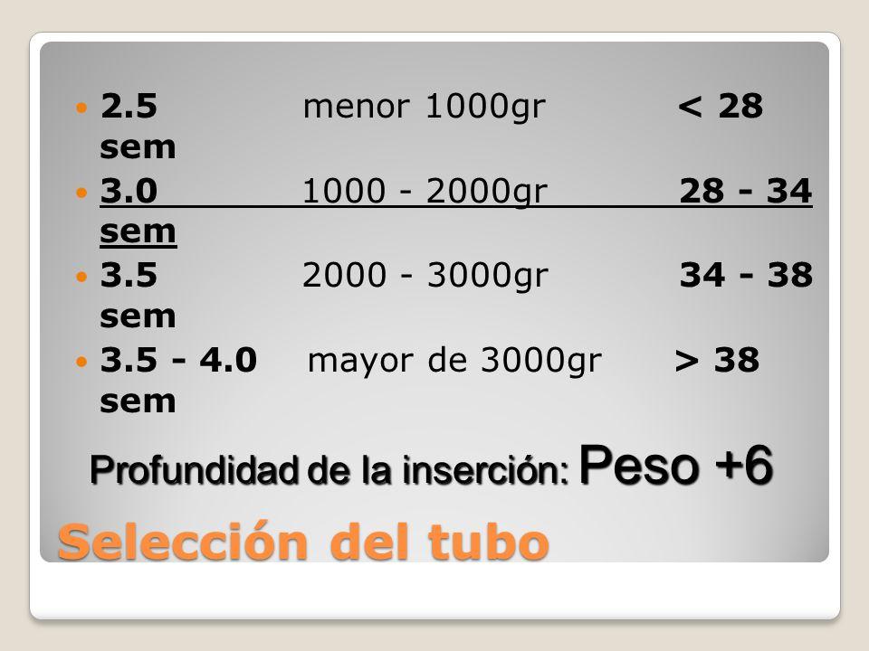 Selección del tubo Profundidad de la inserción: Peso +6
