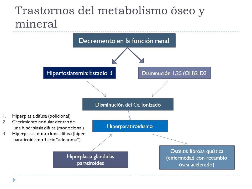 Trastornos del metabolismo óseo y mineral