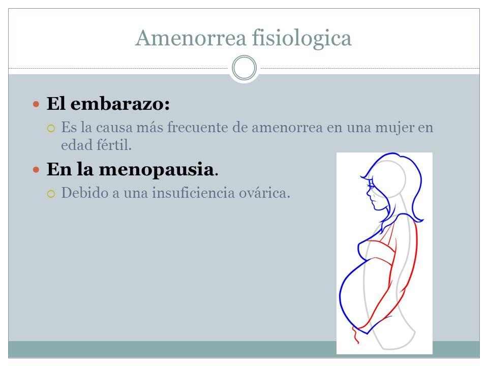 Amenorrea fisiologica