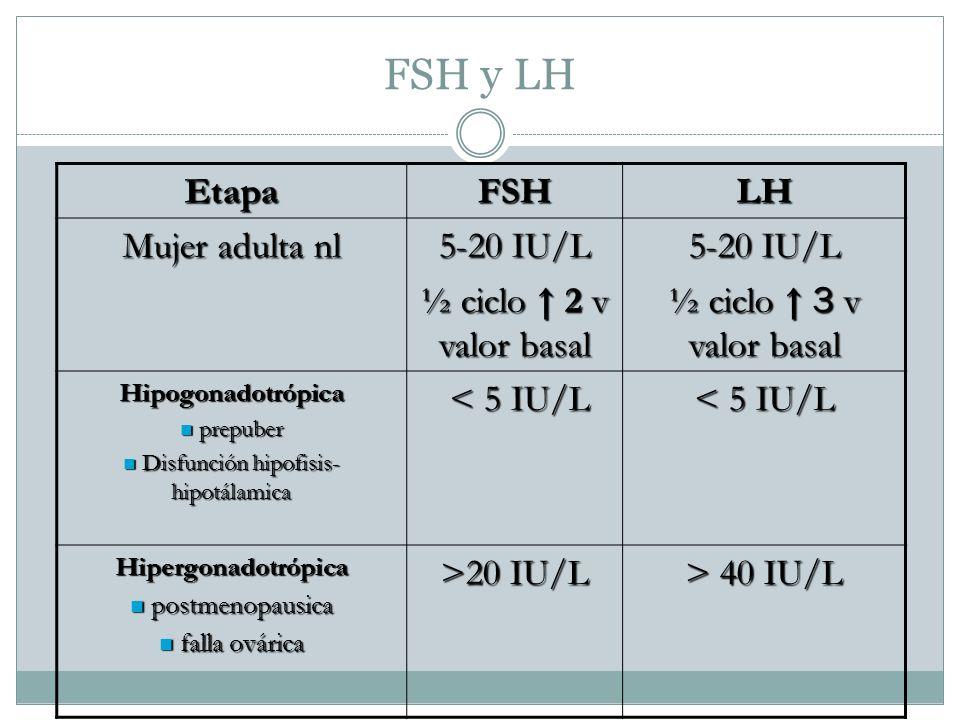 Disfunción hipofisis- hipotálamica