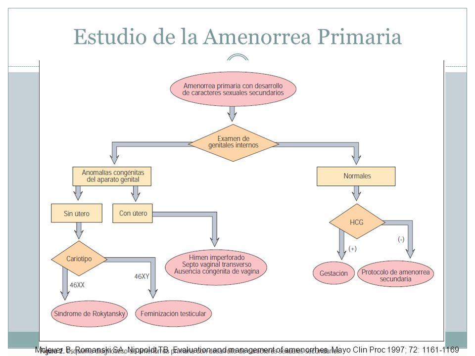 Estudio de la Amenorrea Primaria