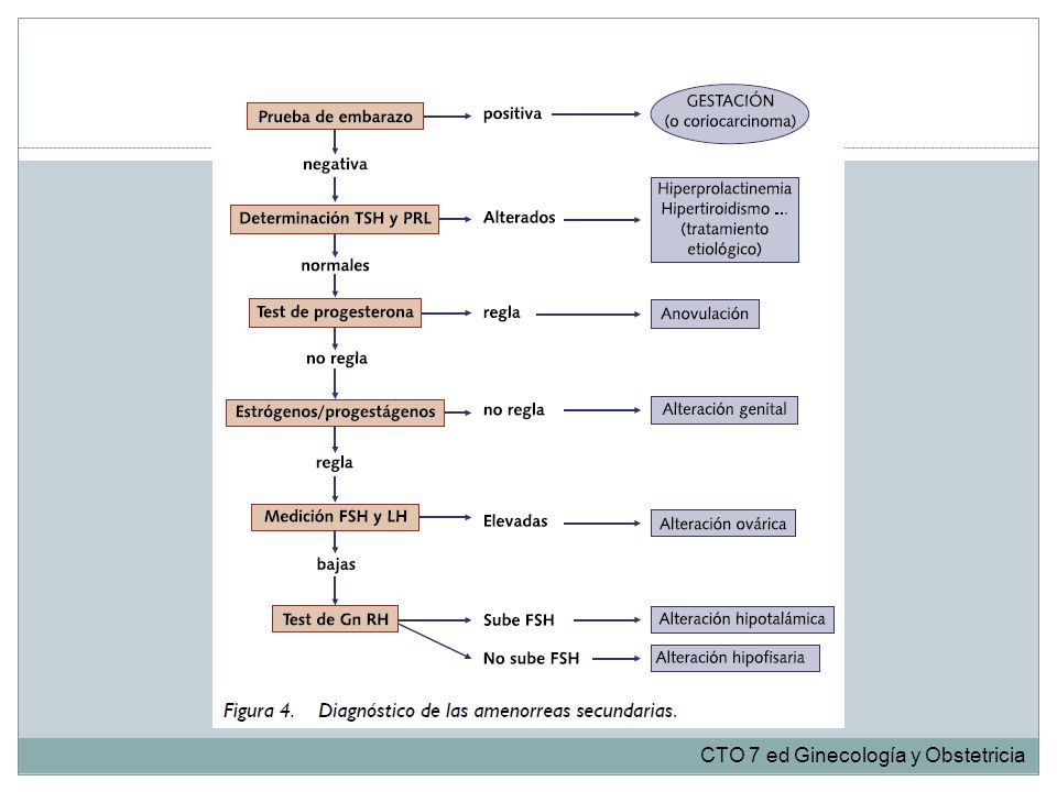 CTO 7 ed Ginecología y Obstetricia