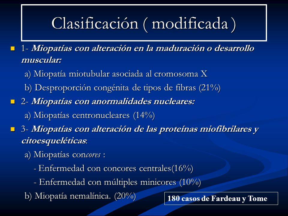 Clasificación ( modificada )