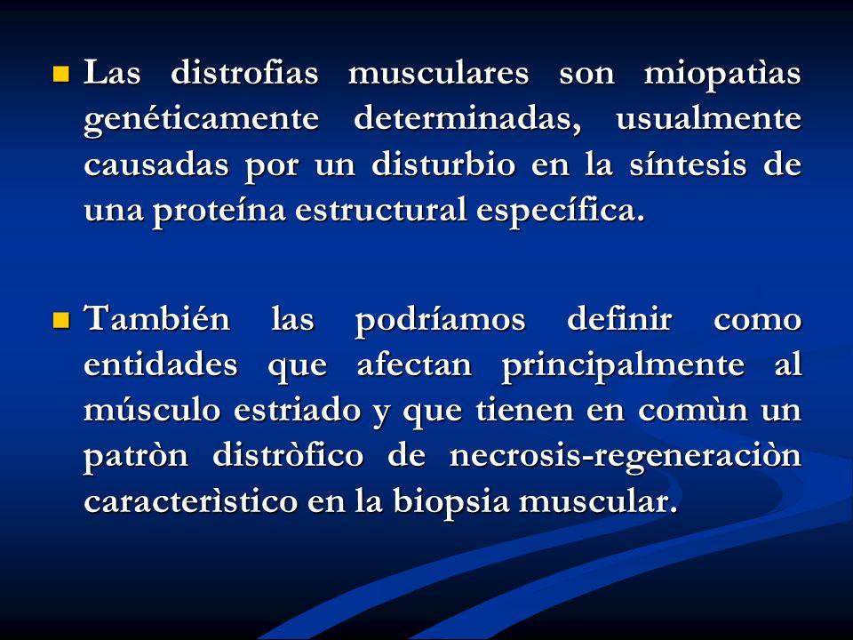 Las distrofias musculares son miopatìas genéticamente determinadas, usualmente causadas por un disturbio en la síntesis de una proteína estructural específica.