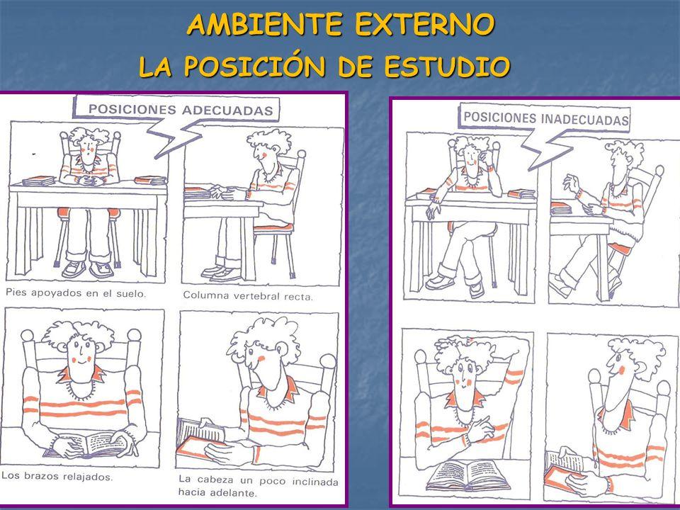 AMBIENTE EXTERNO LA POSICIÓN DE ESTUDIO