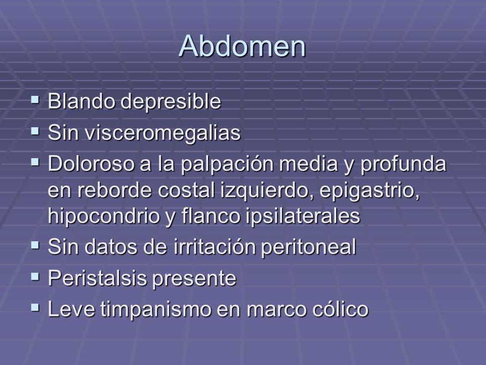 Abdomen Blando depresible Sin visceromegalias