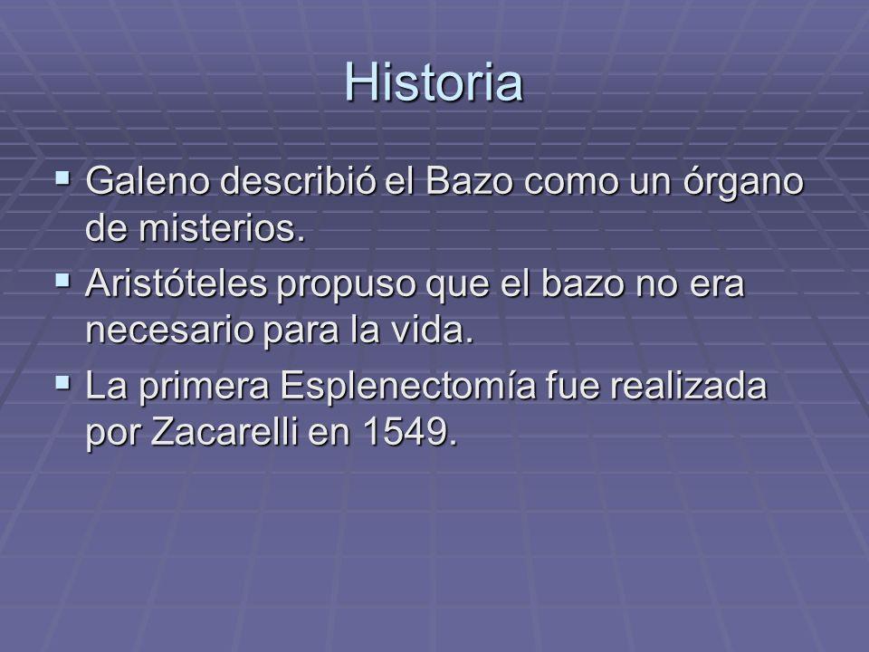 Historia Galeno describió el Bazo como un órgano de misterios.