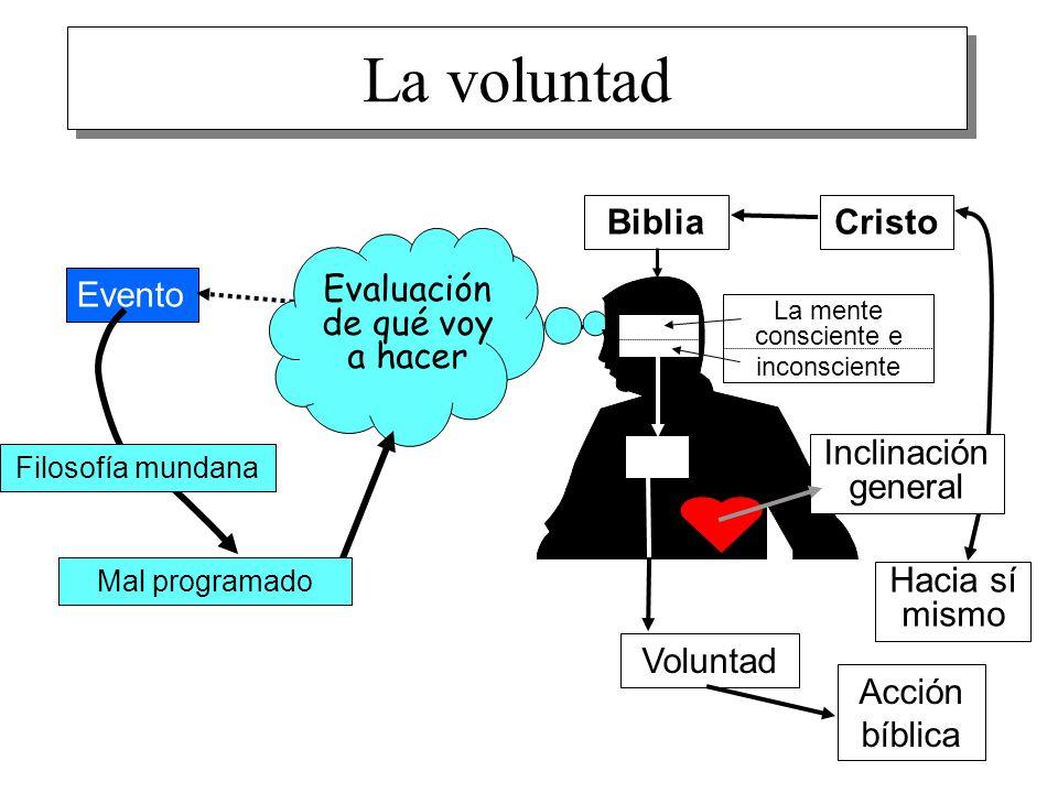 La voluntad Biblia Cristo Evento Evaluación de qué voy a hacer