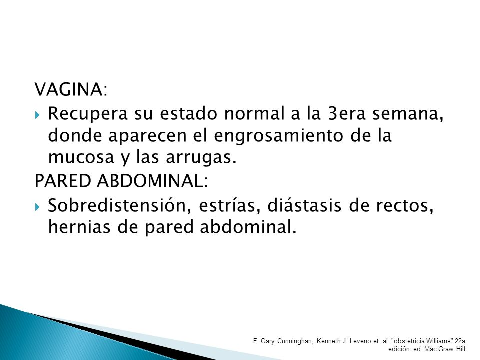 VAGINA: Recupera su estado normal a la 3era semana, donde aparecen el engrosamiento de la mucosa y las arrugas.