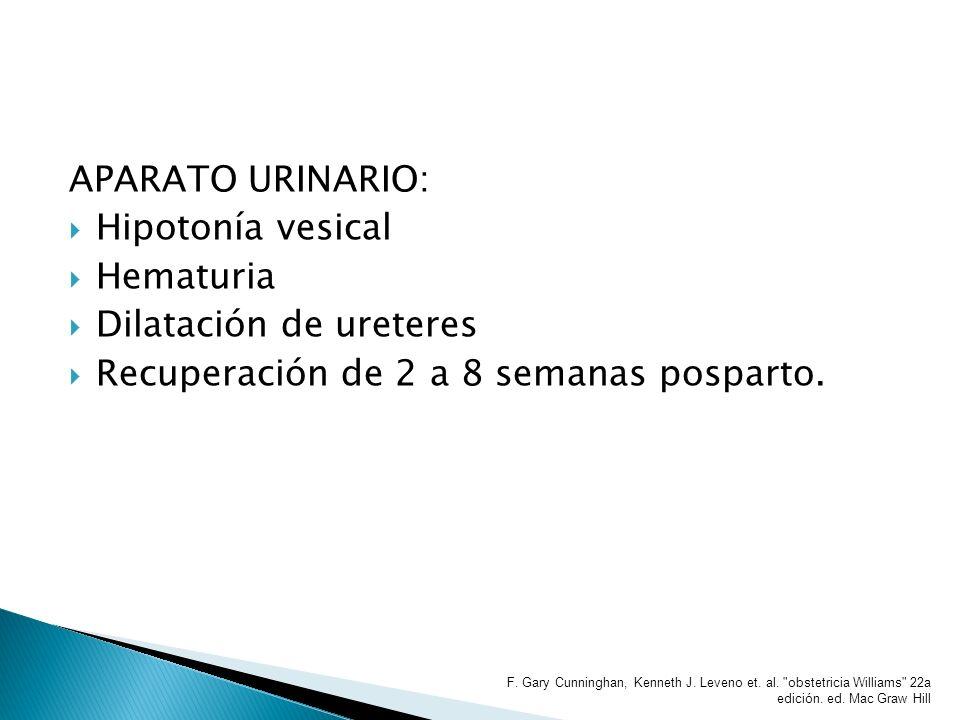 Dilatación de ureteres Recuperación de 2 a 8 semanas posparto.