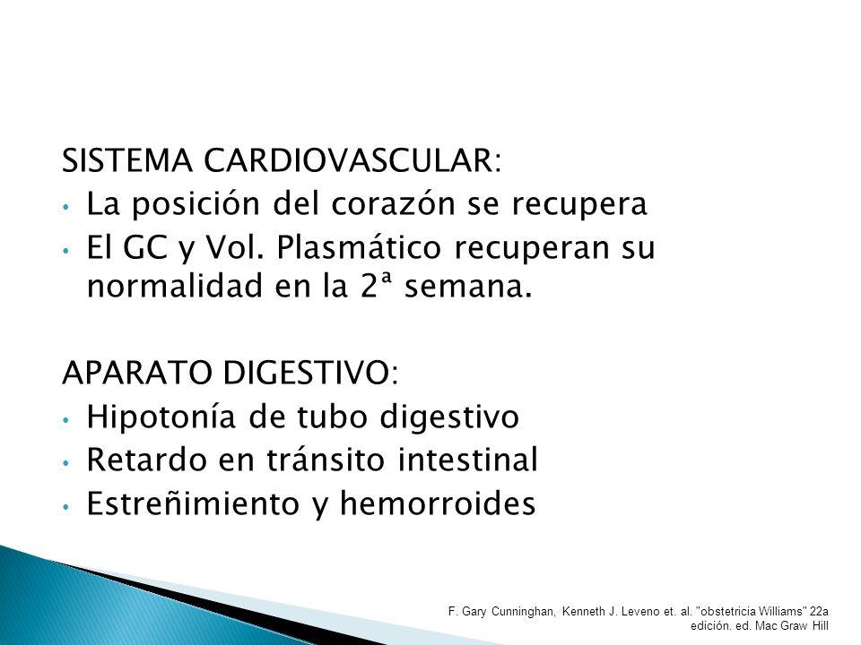 SISTEMA CARDIOVASCULAR: La posición del corazón se recupera