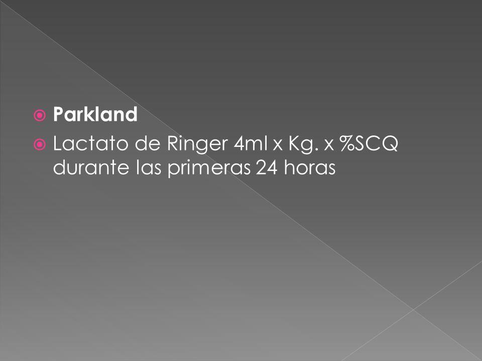 Parkland Lactato de Ringer 4ml x Kg. x %SCQ durante las primeras 24 horas
