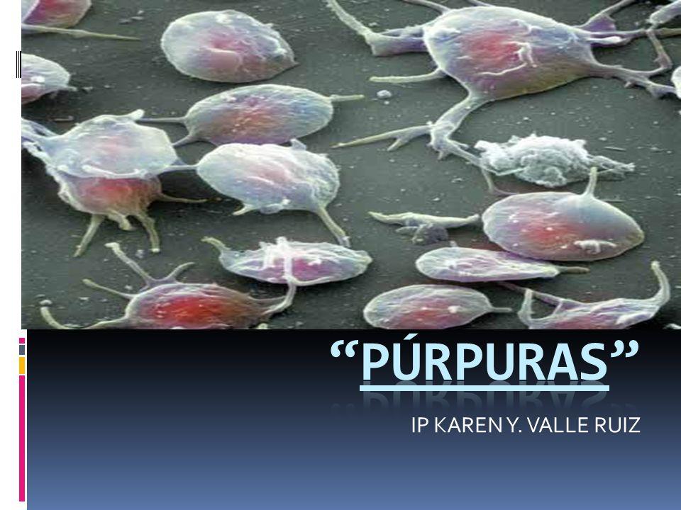 púrpuras IP KAREN Y. VALLE RUIZ