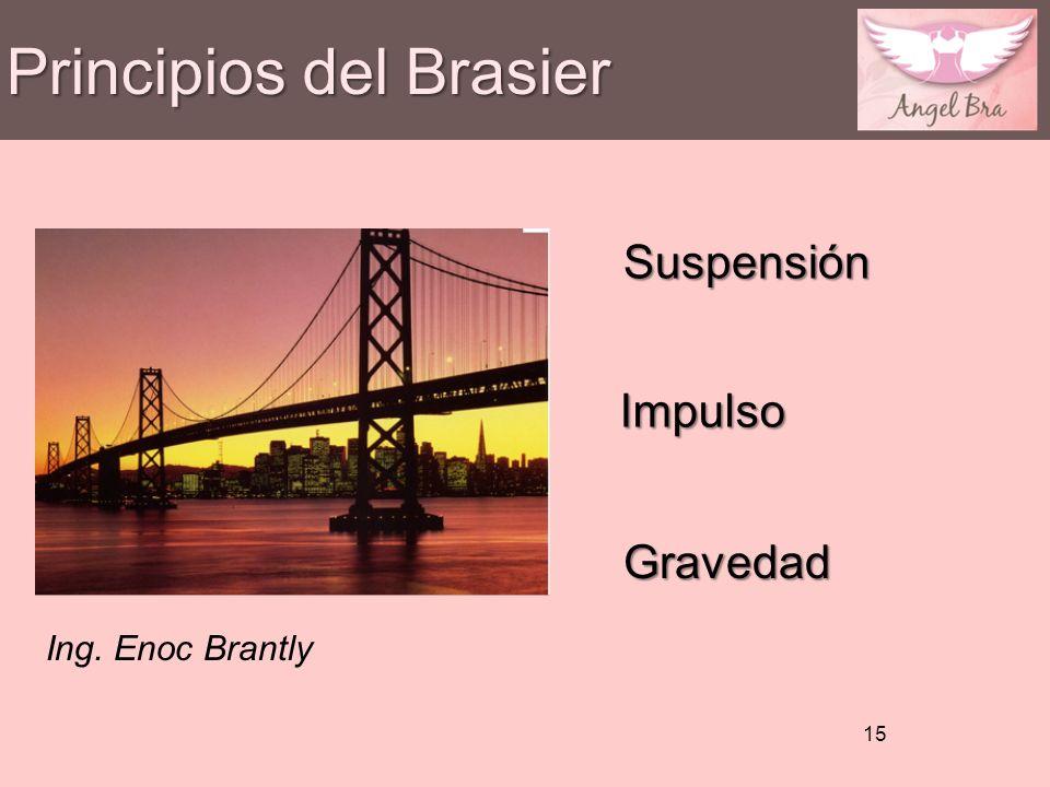 Principios del Brasier