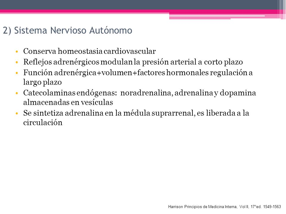 2) Sistema Nervioso Autónomo