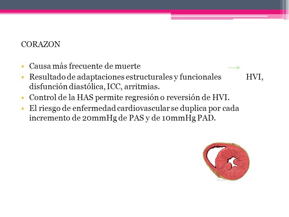 CORAZONCausa más frecuente de muerte. Resultado de adaptaciones estructurales y funcionales HVI, disfunción diastólica, ICC, arritmias.