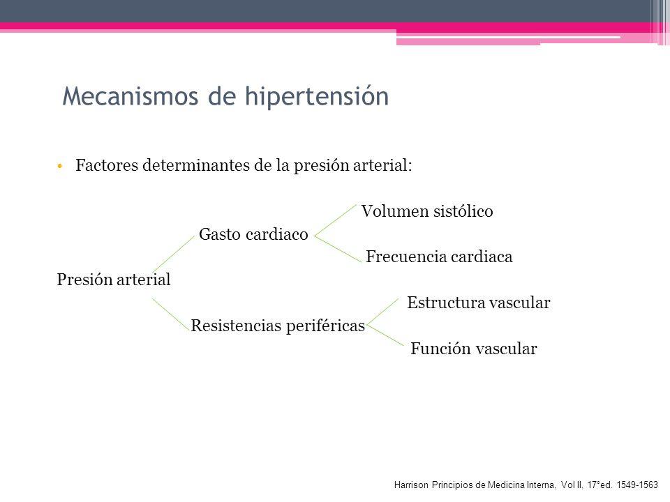Mecanismos de hipertensión
