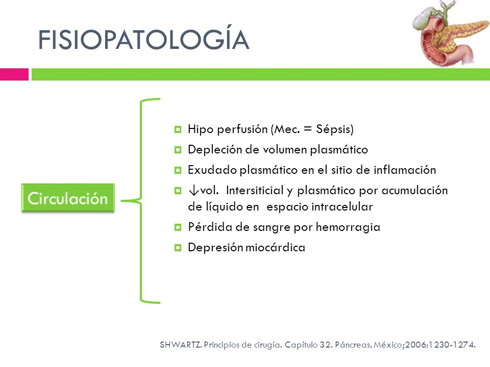 FISIOPATOLOGÍA Circulación Hipo perfusión (Mec. = Sépsis)