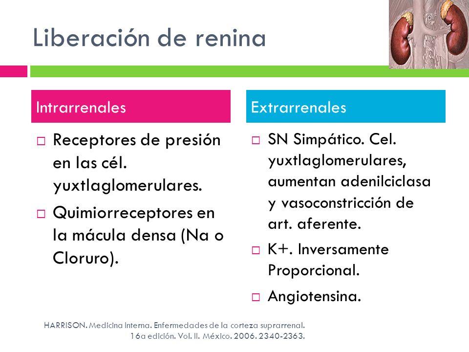 Liberación de renina Intrarrenales. Extrarrenales. Receptores de presión en las cél. yuxtlaglomerulares.