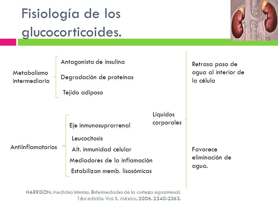 Fisiología de los glucocorticoides.