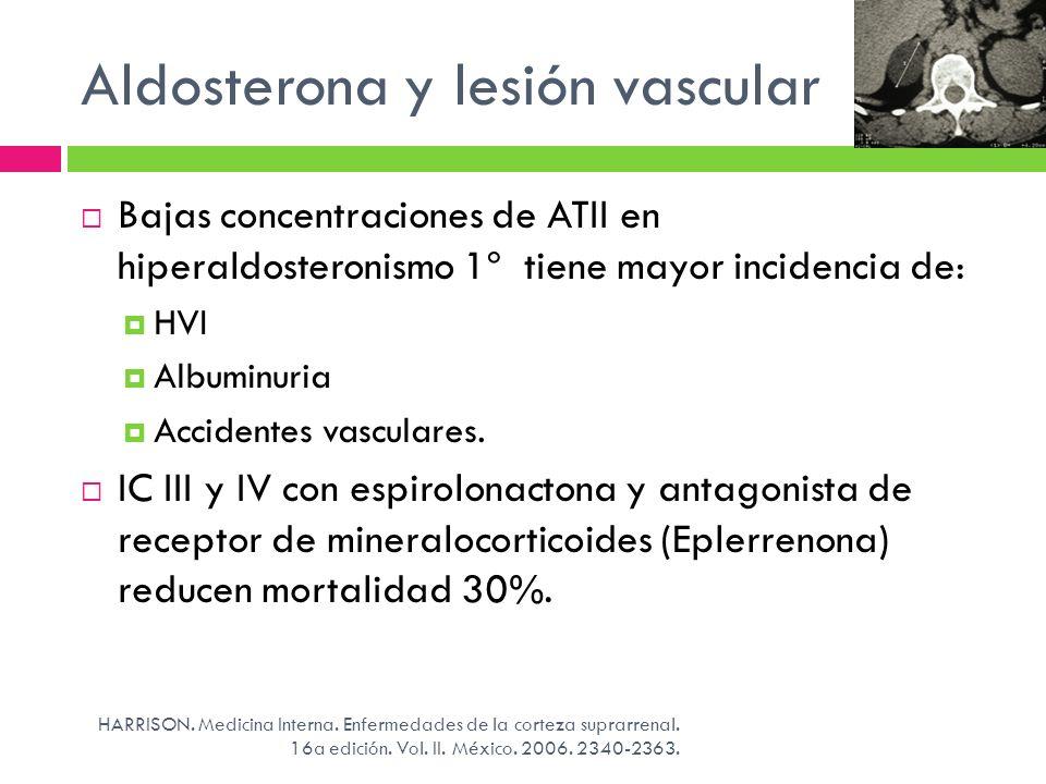 Aldosterona y lesión vascular