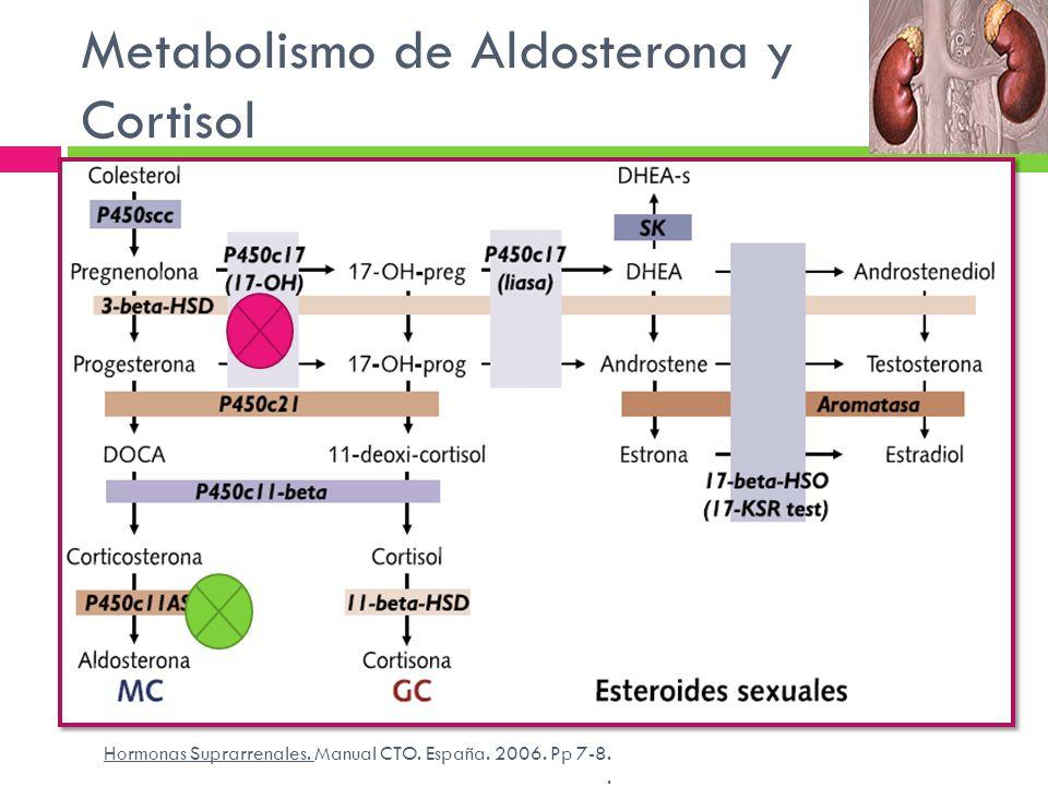 Metabolismo de Aldosterona y Cortisol
