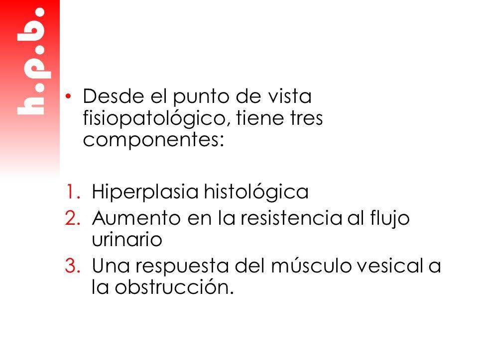 Desde el punto de vista fisiopatológico, tiene tres componentes: