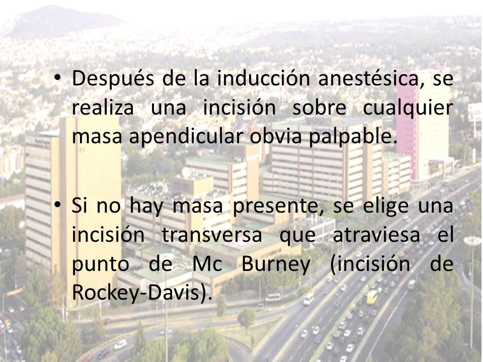Después de la inducción anestésica, se realiza una incisión sobre cualquier masa apendicular obvia palpable.