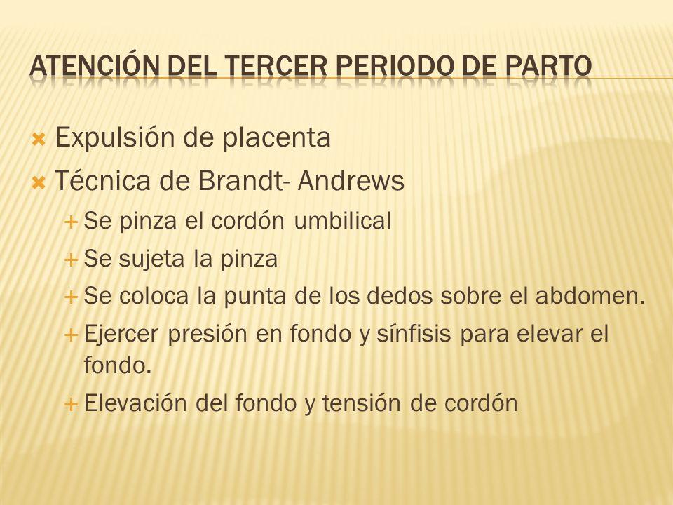 ATENCIÓN DEL TERCER PERIODO DE PARTO