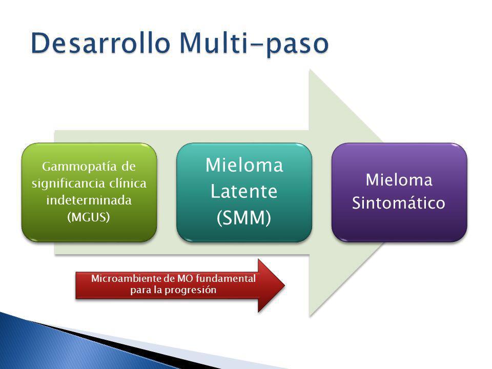 Desarrollo Multi-paso