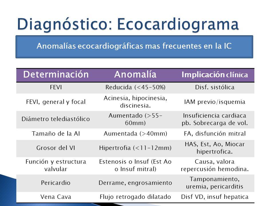 Diagnóstico: Ecocardiograma