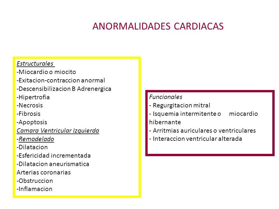 ANORMALIDADES CARDIACAS