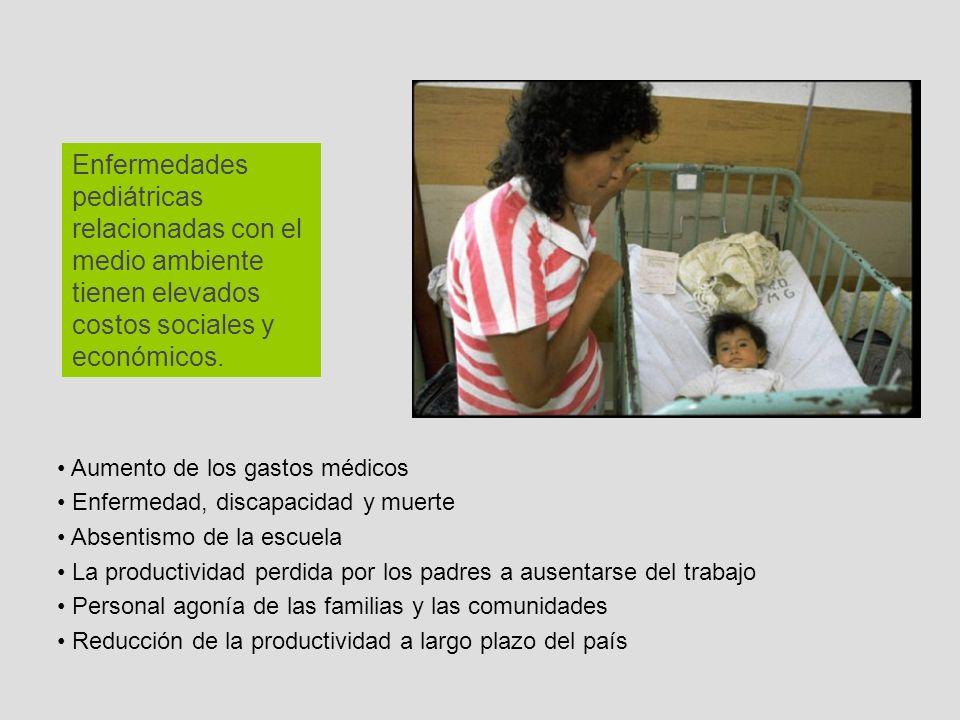 Enfermedades pediátricas relacionadas con el medio ambiente tienen elevados costos sociales y económicos.
