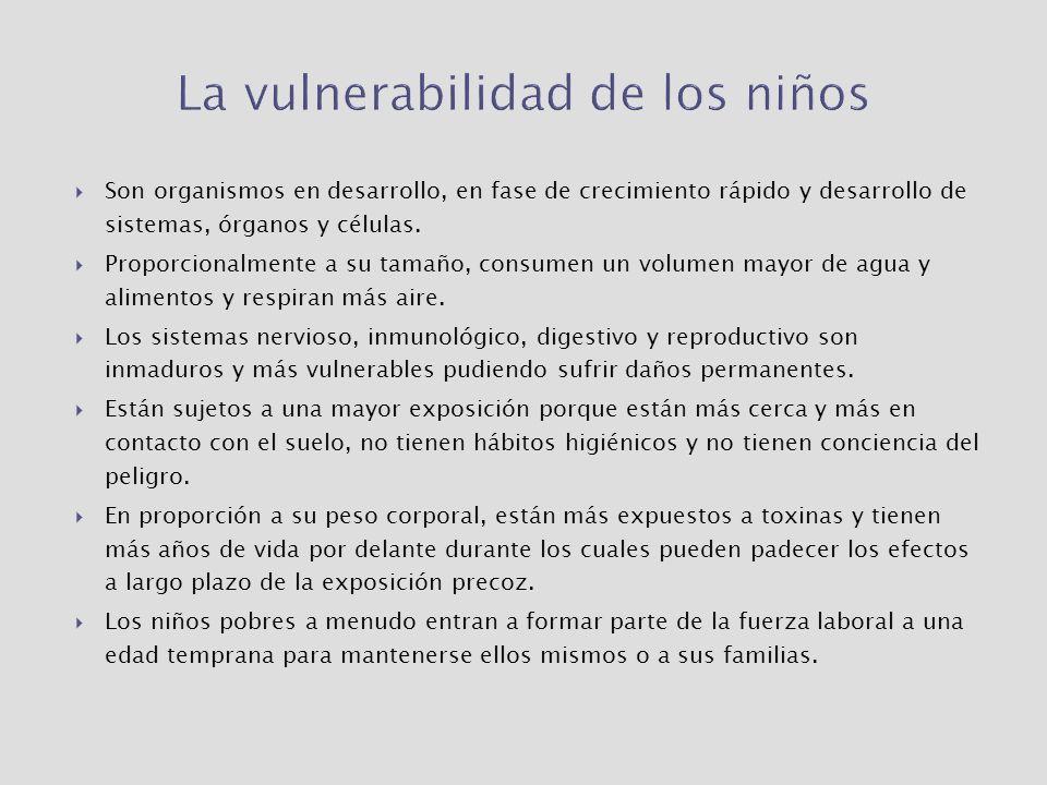 La vulnerabilidad de los niños