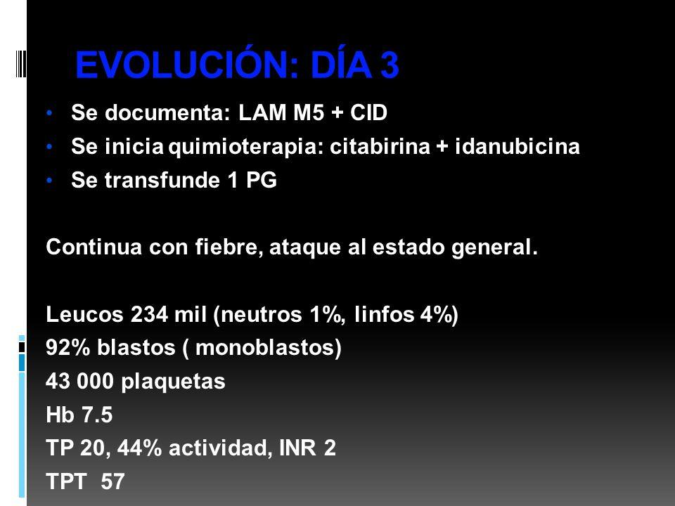 EVOLUCIÓN: DÍA 3 Se documenta: LAM M5 + CID