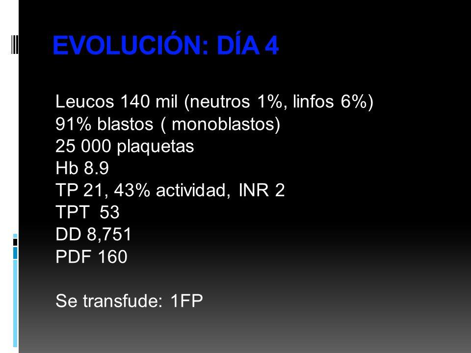 EVOLUCIÓN: DÍA 4