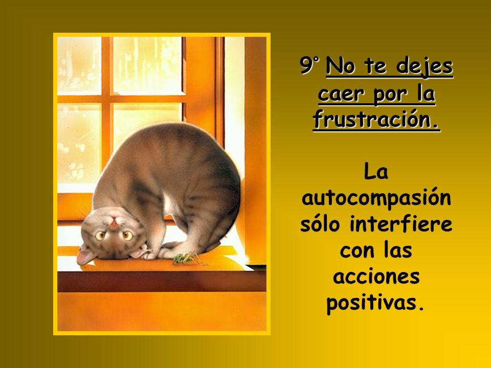 9° No te dejes caer por la frustración